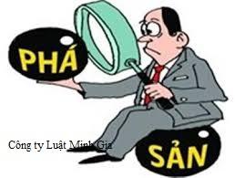 Trách nhiệm của Công ty TNHH 100% vốn nước ngoài khi phá sản đối với nhân viên như thế nào?