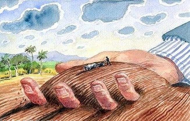 Xác định loại đất trong khi sử dụng đất không có giấy tờ như thế nào?